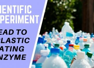 Plastic Eating Enzyme