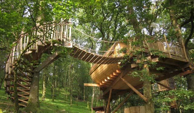 Cemmaes Tree House