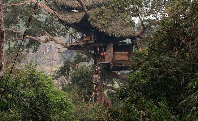 Laos Tree House