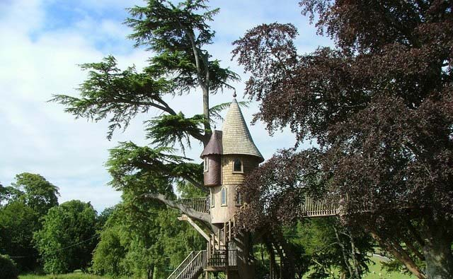 Melville Tree House