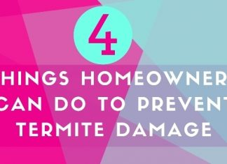 Prevent Termite Damage