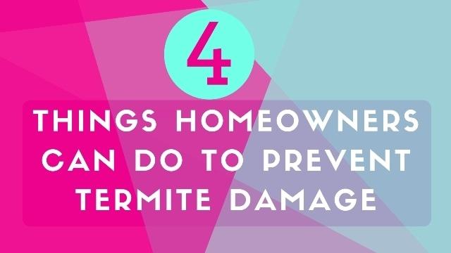 Prevent Termite Damage