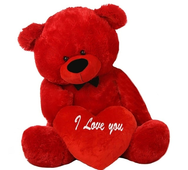 Teddy Bear - valentine' day gift ideas for girlfriend