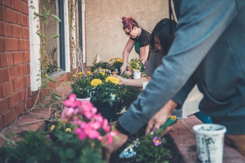 gardening-and-mental-health