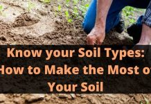 How to Make the Most of Your Soil