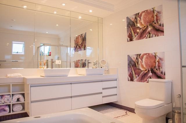 Light Pink Bath Room Wall Paint Design