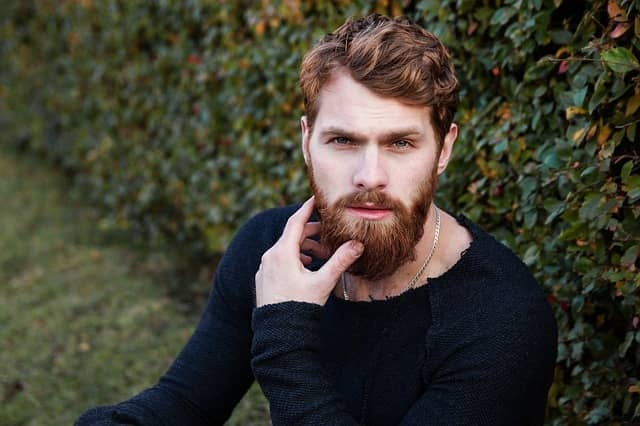 Little Effort - best men beard styles