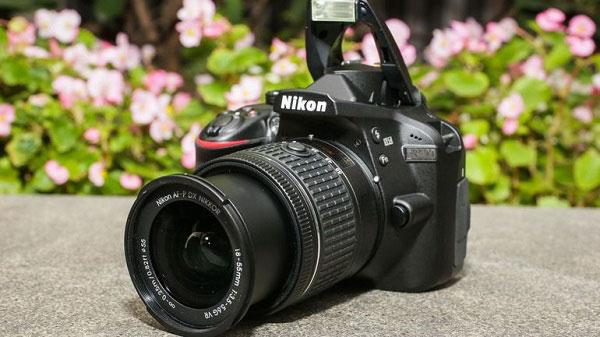 Beginner DSLR Cameras