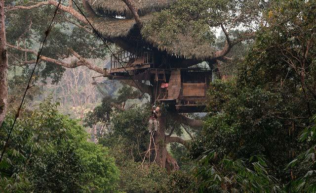 Laos Tree House
