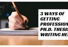 Professional Ph.D. Thesis