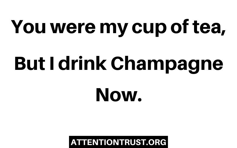 You were my cup of tea, But i drink champagne now.