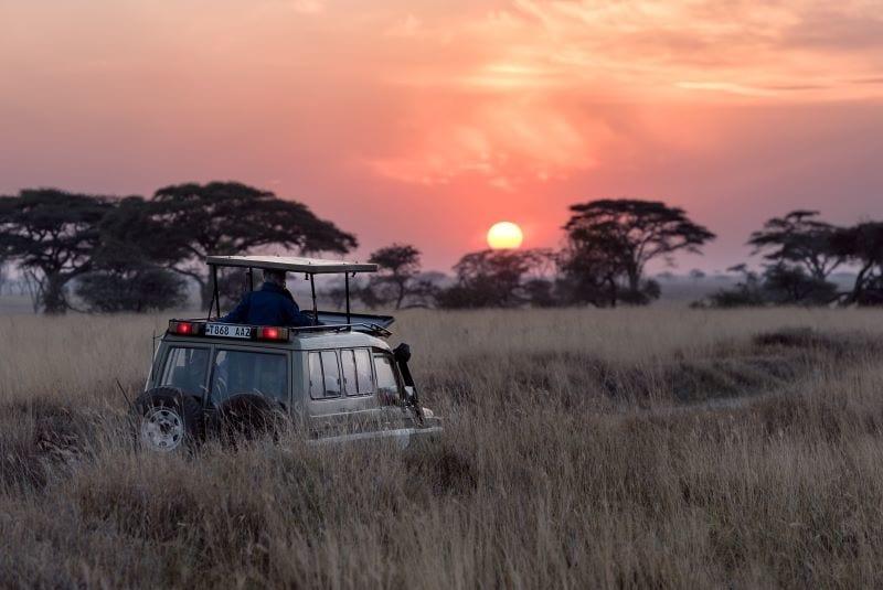 safari park trip