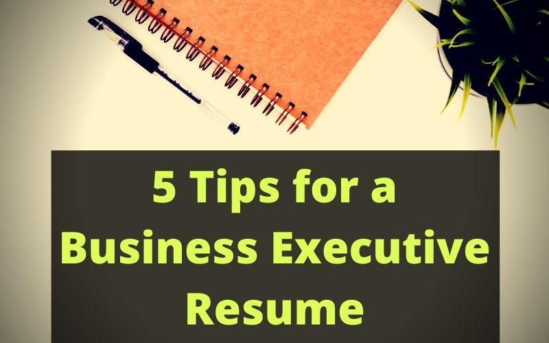 Business Executive Resume
