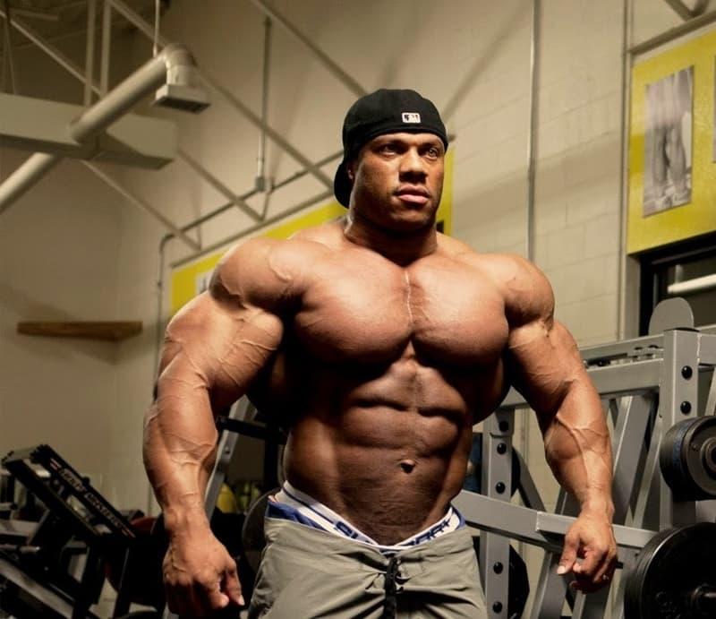 Phiil Heatrth- top body builders