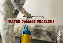 Mold Removal Experts